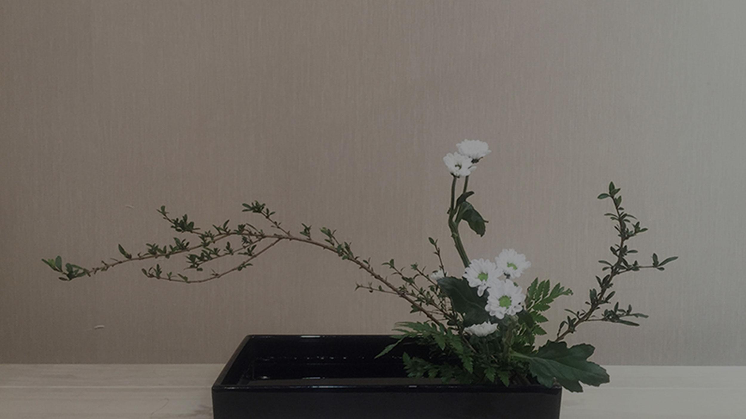 Taller 2 de Ikebana para la casa occidental